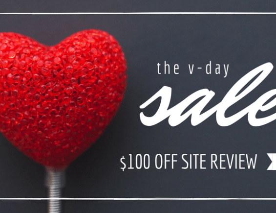 V-Day Sale: Website Review + More!